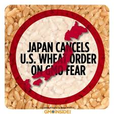 Japan Bans U.S. Wheat
